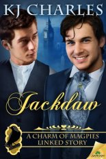 Jackdaw