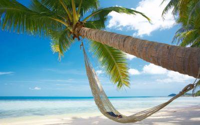 leto-zhara-more-plyazh-palma