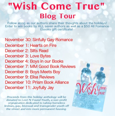 Wish Come True BlogTourFlyer