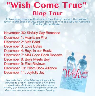 Wish Come True BlogTourFlyer